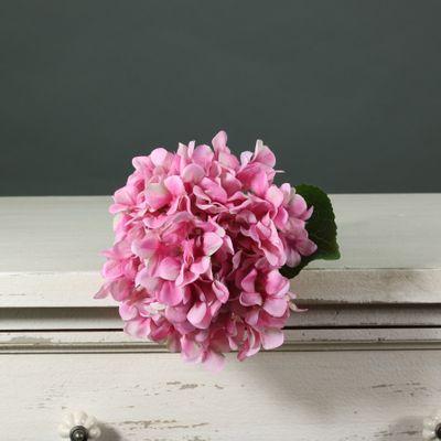 Tintagel Hydrangea Dark Pink(12/144)