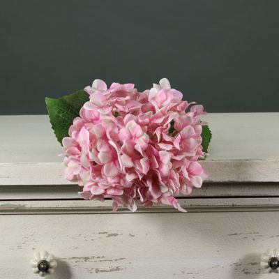 Tintagel Hydrangea Light Pink (12/144)