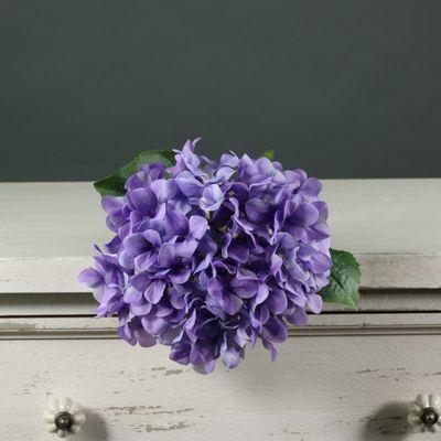 Tintagel Hydrangea Lavender (12/144)