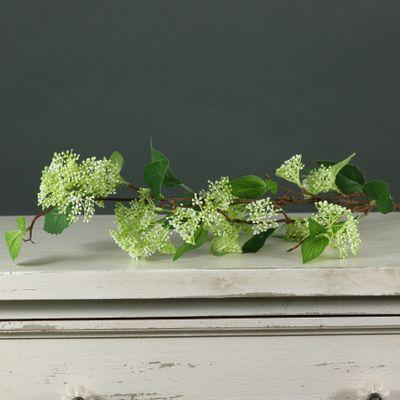 Tintagel Wild Berry Spray Green (24/240)