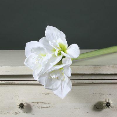 Amaryllis Spray White (60cm)(12/72)
