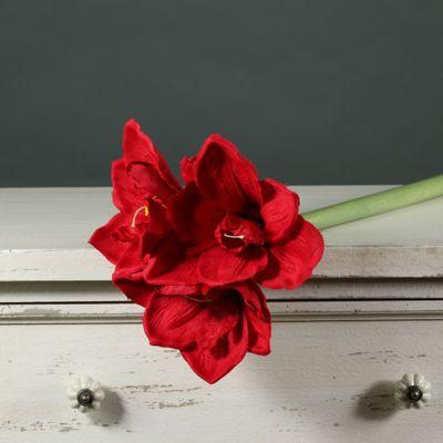 Amaryllis Spray Red (60cm)(12/72)