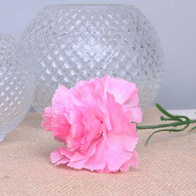 Pink per Dozen Carnation