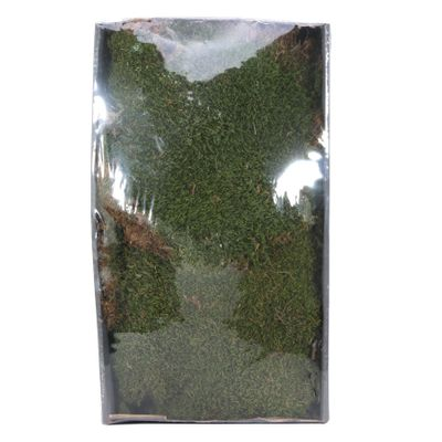 Green Moss w/Tray (Natural) (500gr) (1/6)