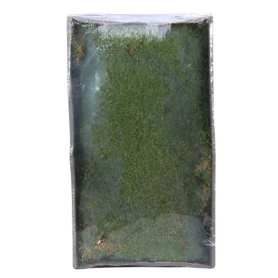 Green Moss w/Tray (Preserved Green) (500gr) (1/6)