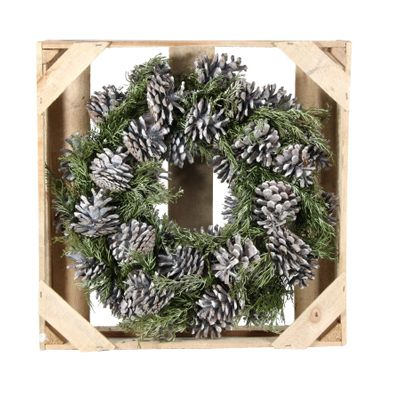38cm Pinus Nigra Frosted Wreath w/preserved branch (1/6)