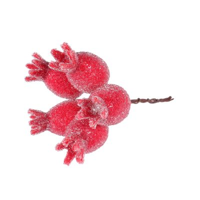 Frosted Rosehip Pick Red (12/120)