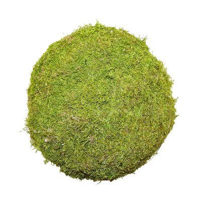 15cm Flat Moss Ball (Preserved Green) (1/27)