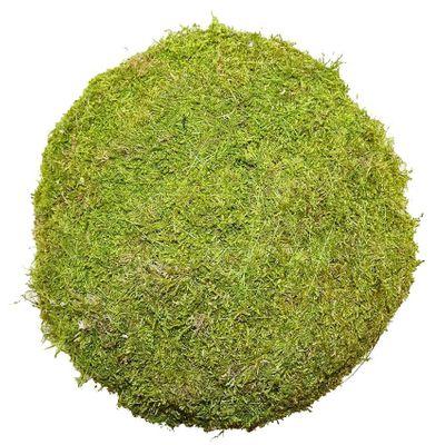 20cm Flat Moss Ball (Preserved Green) (1/8)