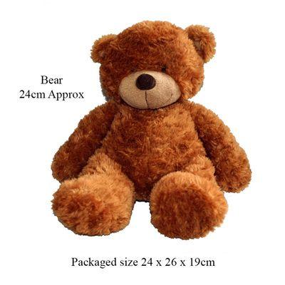 T19674 Soft Brown 24cm Bear (lg)