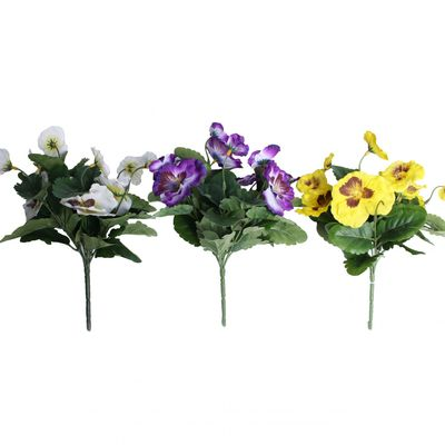 Assorted Pansy Bush x 7