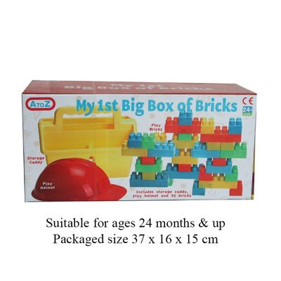 T19718 Bricks/helmet & Caddy