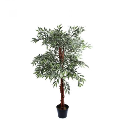 Varigated Ficus Tree Mini Leaf  (120cm)