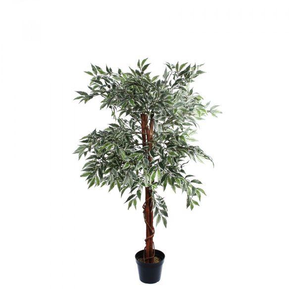 Varigated Ficus Tree Mini Leaf  (120cm)