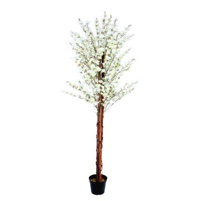 180cm Blossom Tree White