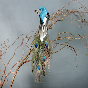 Peacock with Clip (36cm)
