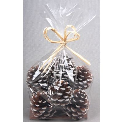 5-7cm Pine Cones with White Tip Bag (x10)
