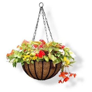 tom chambers hanging basket