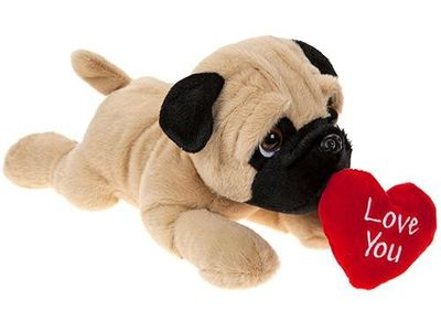 Love you laying Pug