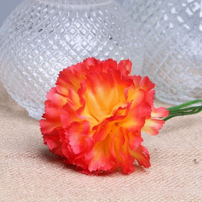 Peach per Dozen Carnation