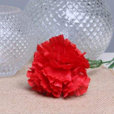 Red per Dozen Carnation