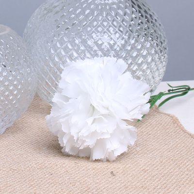 White Carnation per Dozen