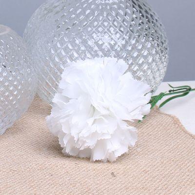 White Carnation per Dozen