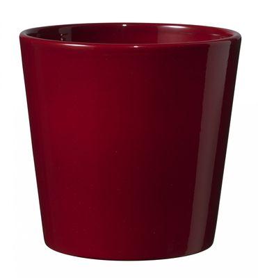 Shiny Bordeaux Dallas Pot