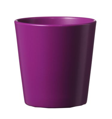 Venus-violet Dallas Pot 8cm