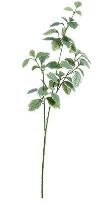 Euonymus Leaves Spray Light Green (91cm)