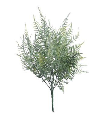 Asparagus Fern Bush (38cm)