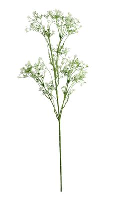 Baby Breath Spray Green (74cm)