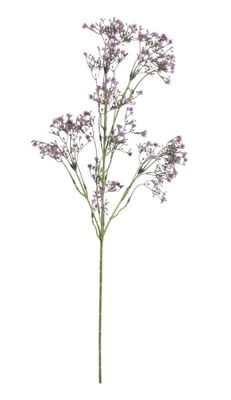 Baby Breath Spray Purple (74cm)