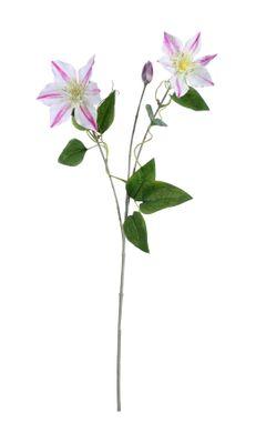 Real Garden Clematics Pink (76cm)