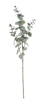 Large Eucalyptus Spray (108cm)