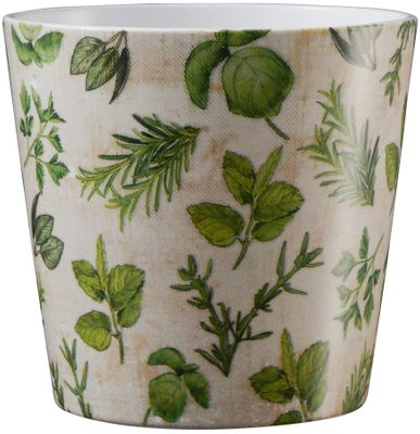 Dallas Herbs 14cm ceramic pot - herbs nature
