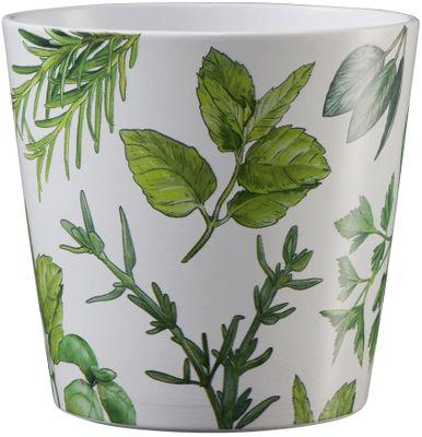 Dallas Herbs 14cm ceramic pot - herbs and white
