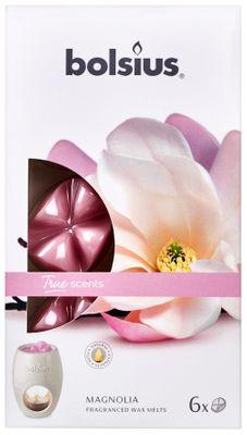 Fragrance wax melTrue Scents pck6  True Scents - Magnolia