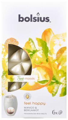 Fragrance wax melts pck6  True Moods FHY - Feel Happy
