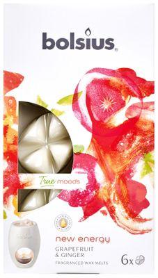 Fragrance wax melts pck6  True Moods NEY - New Energy