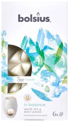 Fragrance wax melts pck6  True Moods IBE - In Balance