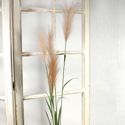 Pampas Grass Brown (145cm)