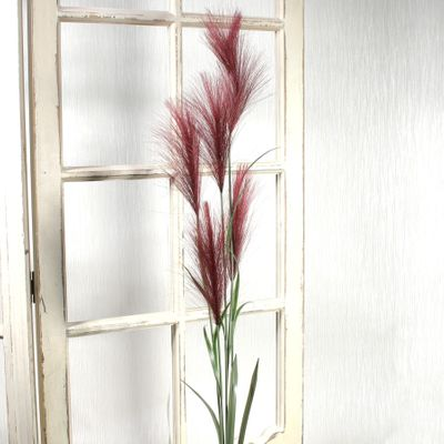 Pampas Grass Red (145cm)