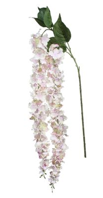 Fantasia Hydrangea Trail Lavender