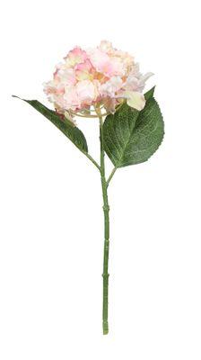 Fantasia Hydrangea Pick Pink