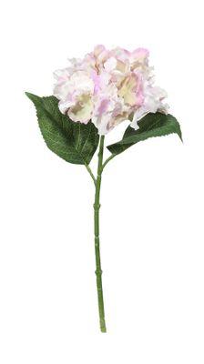 Fantasia Hydrangea Pick Lavender