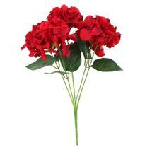 Arundel Hydrangea Bush Red (12/144)