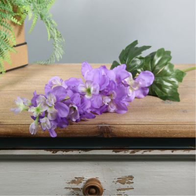 Arundel Garden Delphinium Lavender (24/192)