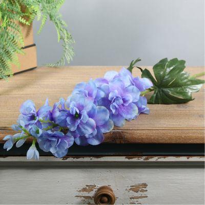 Arundel Garden Delphinium Blue (24/192)