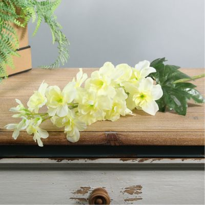 Arundel Garden Delphinium Yellow (24/192)